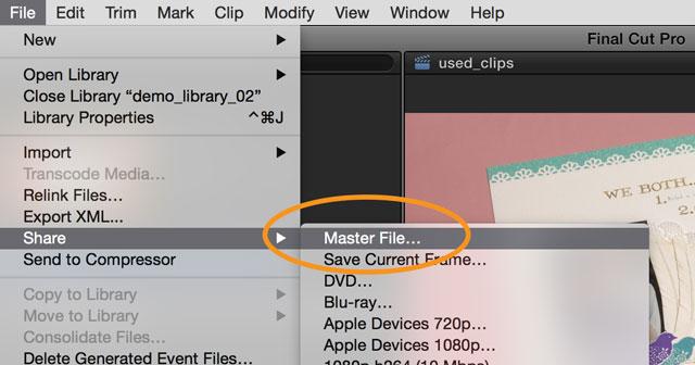 master video file